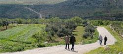 Walking Abraham's Path in Palestine